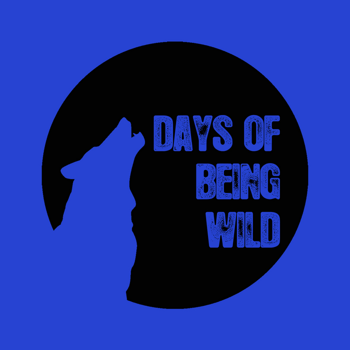 Heretic - Geodesic [Days Of Being Wild WILD 024] (25 February, 2014)