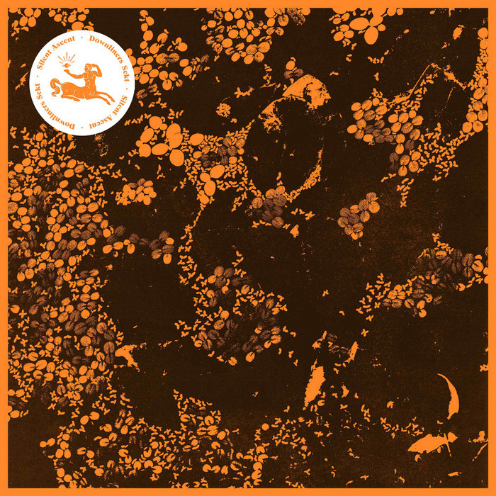 Downliners Sekt - Silent Ascent [InFine Music IF1028LP] (2014-04-07)