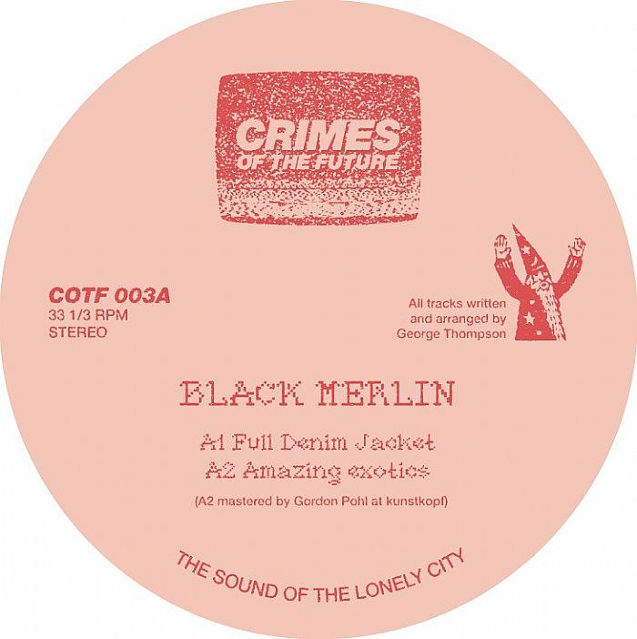 Black Merlin- Amazing exotics