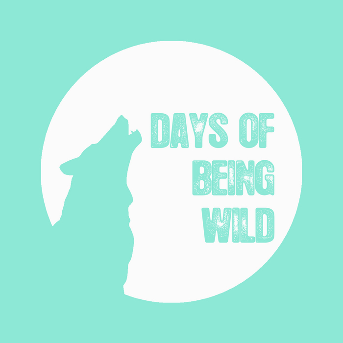 Gin Sling - Der Bronson EP [Days Of Being Wild WILD029] (12 May 2014)