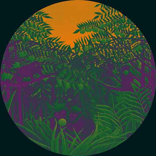 Simple Symmetry - Apes In The Orange Groove [Glenview Records GVR1230] (20 June, 2014)