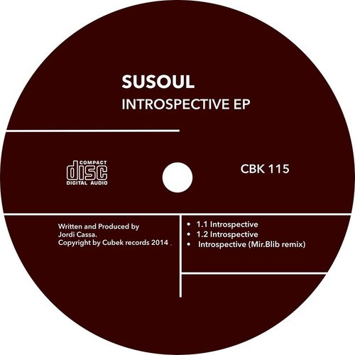 SuSoul - Introspective EP [Cubek Records] (2014)