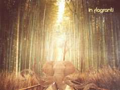 In Flagranti - Different From The Rest EP [La Belle Records 64598] (6-10-2014)