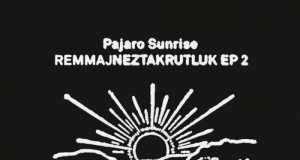Pajaro Sunrise - Remmajneztakrutluk, Vol. 2 [Lovemonk LMNKV51RMXB] (2014-11-24)