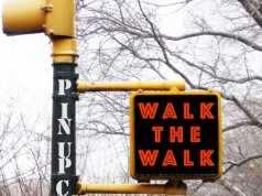 Pin Up Club - Walk The Walk [Nein Records NEIN014] (5 January, 2015)
