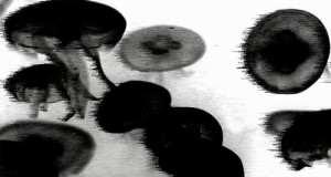 Tronik Youth - Splinter Of The Minds Eye EP [Nein Records NEIN 016] (16 February, 2015)