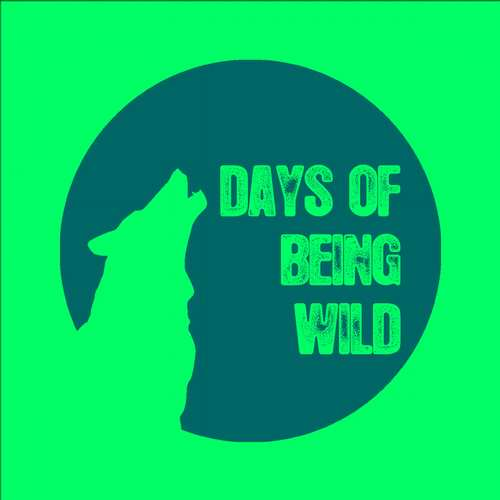 Lokier - Voyage of Troubles / The Train Loop EP [Days Of Being Wild] (2015)