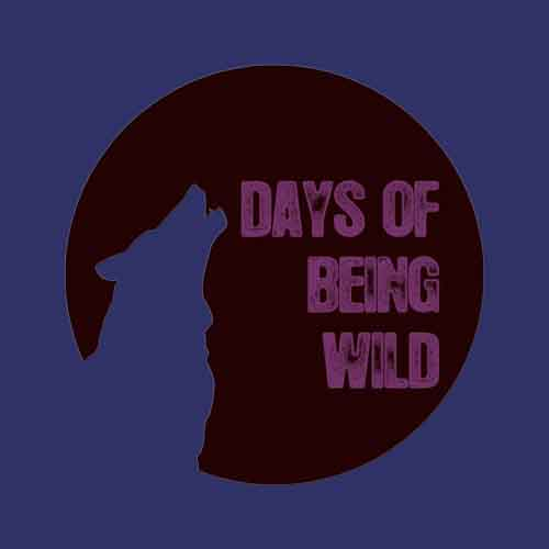 daWad - Catharsis EP [Days Of Being Wild WILD 041] (11 January, 2016)