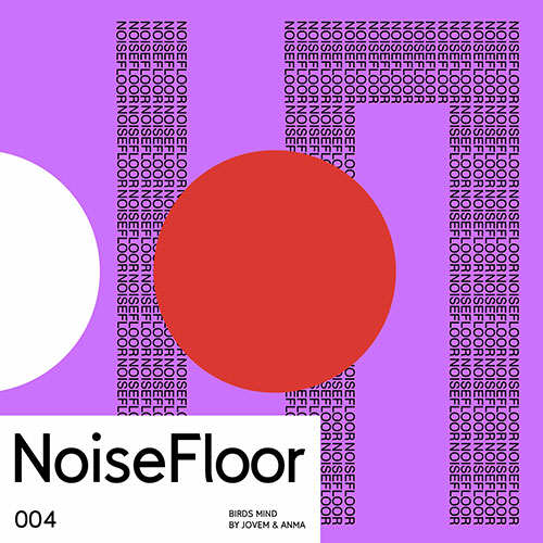 ANMA & JOVEM - Birds Mind [NoiseFloor Records] (2019)