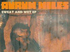 PREMIERE: Aurum Miles - Aus Baus [Coquilot Records]