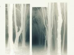 PREMIERE: TJ Lawton - Trelkaw (Fausto Remix) [Nein Records]