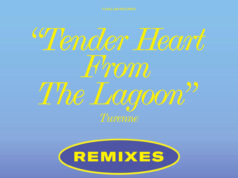 V/A - Tender Heat From The Lagoon (Remixes) (2020)