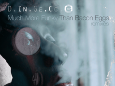 PREMIERE: D.In.Ge.Cc.O - Much More Funky Than Bacon Eggs (Matteo Lo Valvo Remix [Waste Noise]