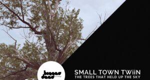 Small Town Twiin - Bark [Bigger Deer Recordings]