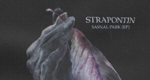 PREMIERE: Strapontin - Family Diner (Feon Dead Rat Salad Remix) [Abstrack Records]